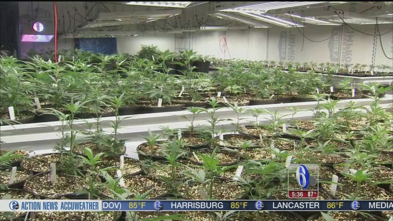 VIDEO: Delaware's first medical marijuana dispensary set to open