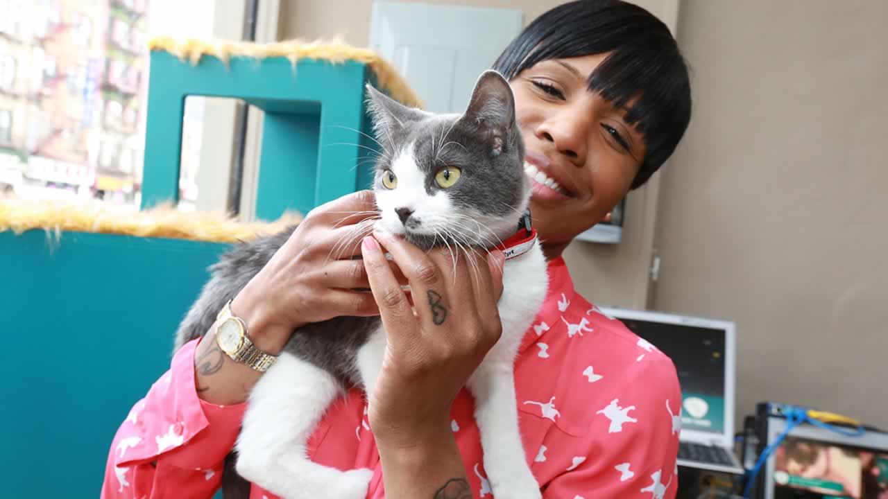 """<div class=""""meta image-caption""""><div class=""""origin-logo origin-image """"><span></span></div><span class=""""caption-text"""">June 4- Hug Your Cat Day:  You should be hugging your favorite feline every day anyways, but give that furry friend a little extra love on this day. (AP Images)</span></div>"""