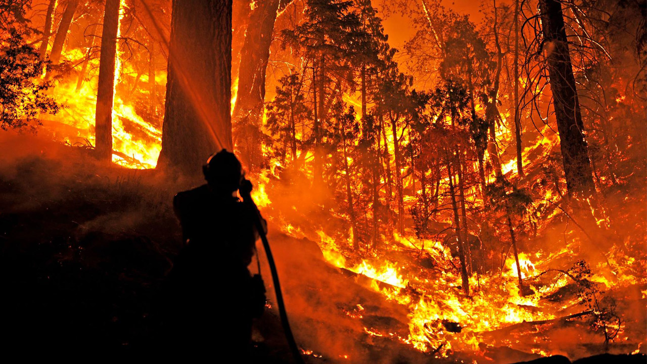 A firefighters uses a hose and works to put out massive flames in the San Bernardino Forest.