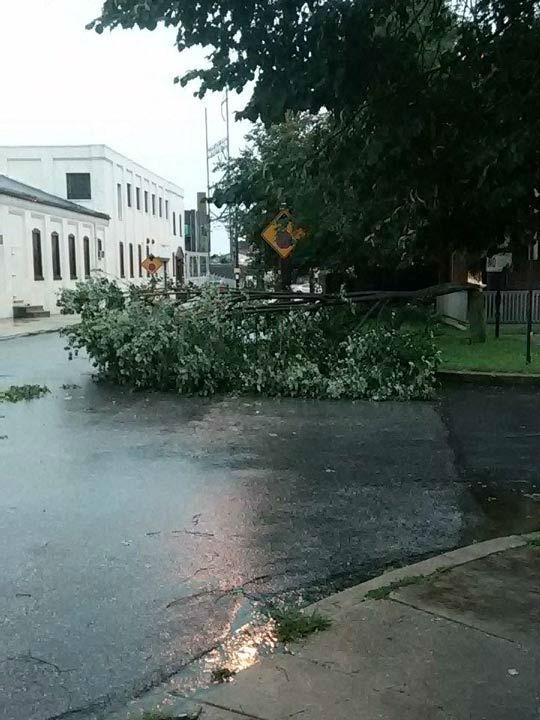 "<div class=""meta image-caption""><div class=""origin-logo origin-image none""><span>none</span></div><span class=""caption-text"">Ronny W.: @6abc lightning struck a tree Wilmington, DE Robinson Street at Lombard Street (WPVI Photo)</span></div>"
