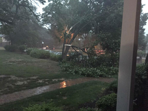 "<div class=""meta image-caption""><div class=""origin-logo origin-image none""><span>none</span></div><span class=""caption-text"">Matt Elwell: @6abc Haddonfield. Tree just snapped right outside my apartment. (WPVI Photo)</span></div>"