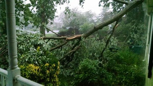 "<div class=""meta image-caption""><div class=""origin-logo origin-image none""><span>none</span></div><span class=""caption-text"">Jeannine Breslin: @6abcadamjoseph @6abc Storm damage in West Chester. (WPVI Photo)</span></div>"