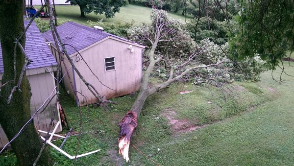 "<div class=""meta image-caption""><div class=""origin-logo origin-image none""><span>none</span></div><span class=""caption-text"">Shawn Smith:  #6abcAction tree came down in our yard here in Oxford, PA due to high winds that came thru around 5:30pm tonight.</span></div>"