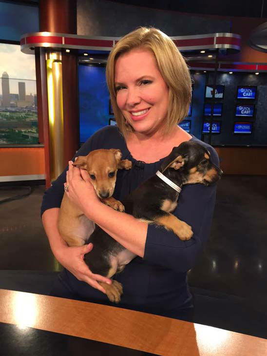"""<div class=""""meta image-caption""""><div class=""""origin-logo origin-image none""""><span>none</span></div><span class=""""caption-text"""">Casey Curry playing with puppies on the set thanks to Uber's Puppy Break (KTRK Photo)</span></div>"""
