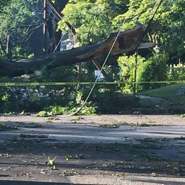 "<div class=""meta image-caption""><div class=""origin-logo origin-image none""><span>none</span></div><span class=""caption-text"">Storm damage in Pennsauken, NJ</span></div>"