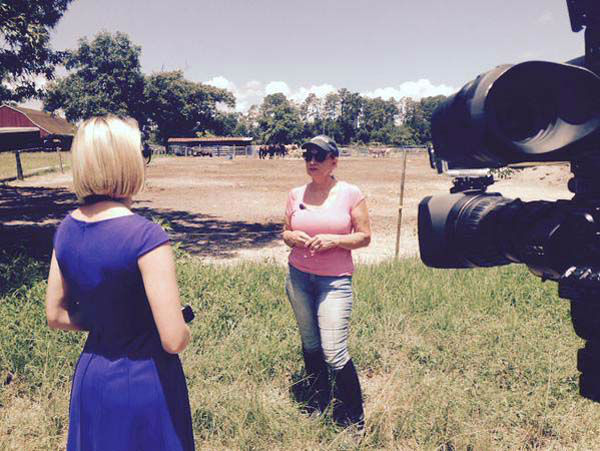 """<div class=""""meta image-caption""""><div class=""""origin-logo origin-image none""""><span>none</span></div><span class=""""caption-text"""">Kaitlin McCulley covering the abused horses in Conroe (KTRK Photo)</span></div>"""
