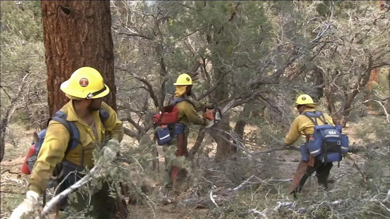 Crews help battle the Lake Fire in the San Bernardino National Forest.