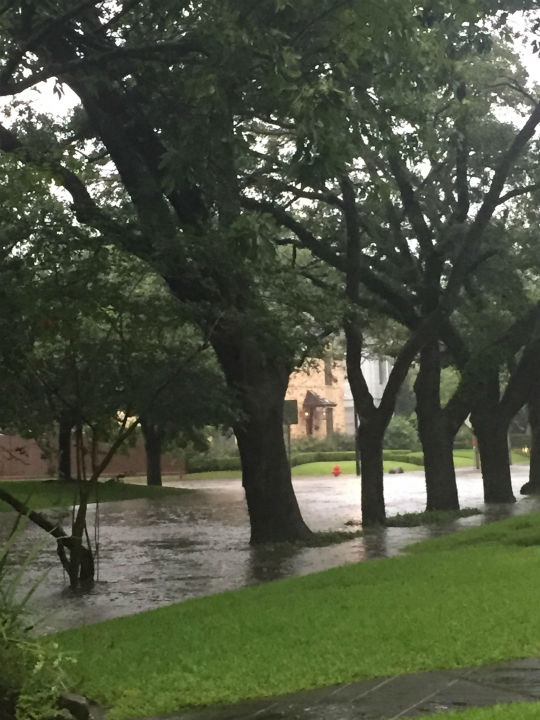 """<div class=""""meta image-caption""""><div class=""""origin-logo origin-image none""""><span>none</span></div><span class=""""caption-text"""">These are photos our viewers sent into Eyewitness News Tuesday, June 30. If you have photos, email them to news@abc13.com or upload them using #abc13eyewitness (Photo/iWitness Photo)</span></div>"""
