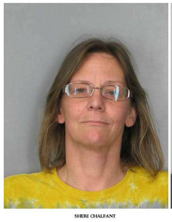 "<div class=""meta image-caption""><div class=""origin-logo origin-image none""><span>none</span></div><span class=""caption-text"">Sheri Chalfant, 52 of Laurel – 2 Charges – Delivery of Heroin, Conspiracy 2nd (WPVI Photo)</span></div>"