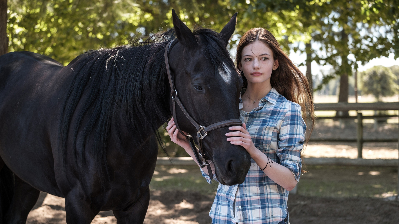 'Black Beauty' actress, director reveal how the Disney+ film changed their lives