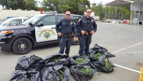 Caltrans crews discovered eight bags of marijuana along Highway 4 in Antioch, Calif. on Thursday, July 2, 2015.