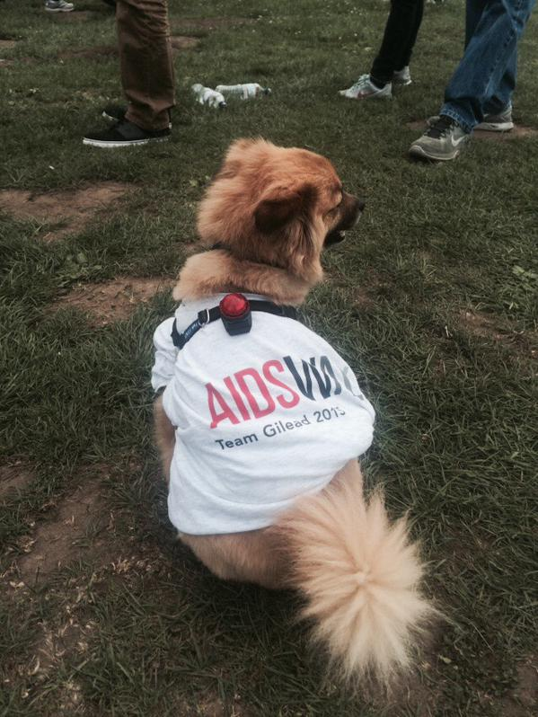 "<div class=""meta image-caption""><div class=""origin-logo origin-image none""><span>none</span></div><span class=""caption-text"">Thousands of people came out to AIDS Walk San Francisco in Golden Gate Park on Sunday, July 19, 2015. Tag your pics #abc7now. (KGO-TV)</span></div>"