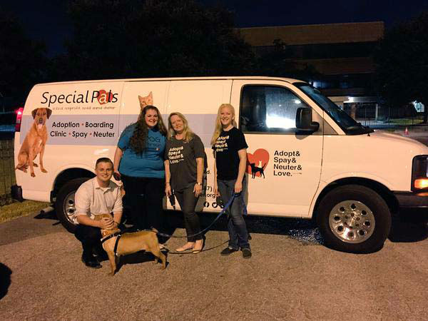"""<div class=""""meta image-caption""""><div class=""""origin-logo origin-image none""""><span>none</span></div><span class=""""caption-text"""">We got a visit from some adorable dogs who need a good home (KTRK Photo)</span></div>"""