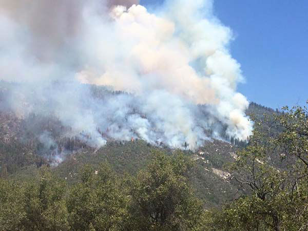 "<div class=""meta image-caption""><div class=""origin-logo origin-image none""><span>none</span></div><span class=""caption-text"">Willow creek fire still going strong North Fork side (Spencer Rollins)</span></div>"