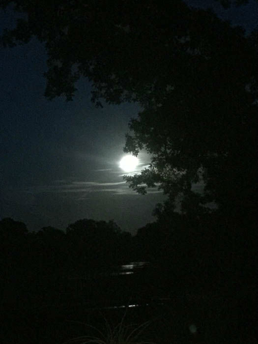 "<div class=""meta image-caption""><div class=""origin-logo origin-image none""><span>none</span></div><span class=""caption-text"">These are viewer photos of the blue moon on Friday, July 31.  If you have photos, email them to us at news@abc13.com or post them using #abc13eyewitness</span></div>"