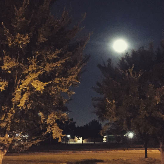 """<div class=""""meta image-caption""""><div class=""""origin-logo origin-image none""""><span>none</span></div><span class=""""caption-text"""">These are viewer photos of the blue moon on Friday, July 31.  If you have photos, email them to us at news@abc13.com or post them using #abc13eyewitness</span></div>"""