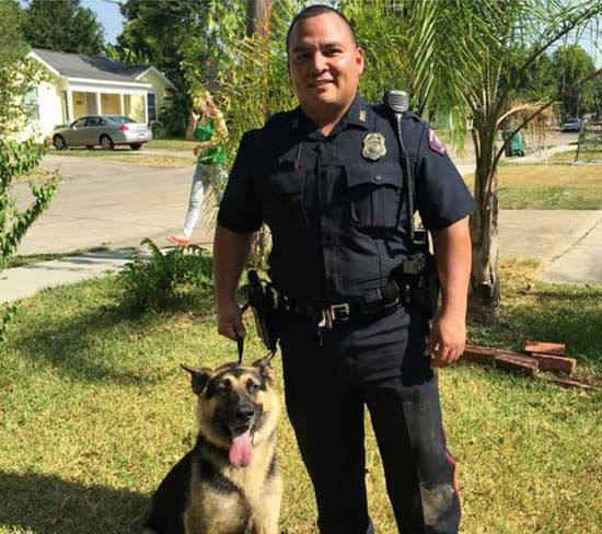 "<div class=""meta image-caption""><div class=""origin-logo origin-image none""><span>none</span></div><span class=""caption-text"">A Pasadena police officer poses with the rescued German Shepherd (Pasadena Police Department)</span></div>"