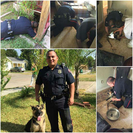 "<div class=""meta image-caption""><div class=""origin-logo origin-image none""><span>none</span></div><span class=""caption-text"">Pasadena police shared the message on Facebook with this photo montage (Pasadena Police Department)</span></div>"