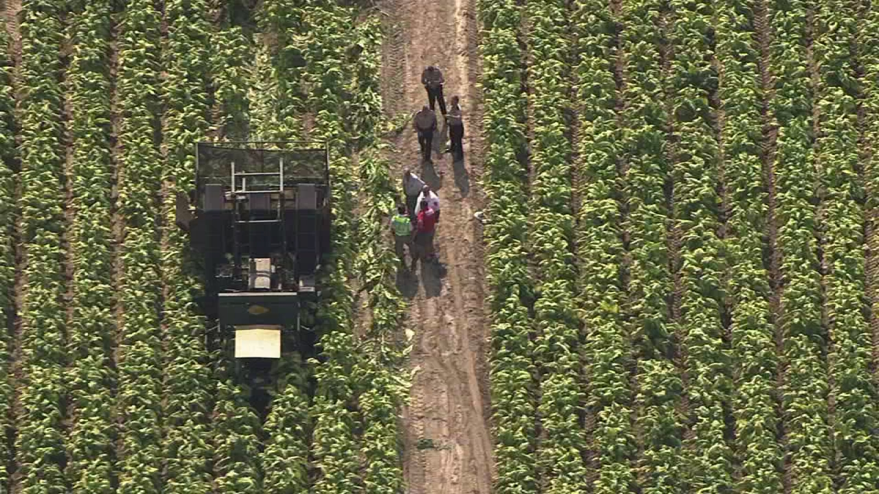 Man caught in farm machinery near Benson