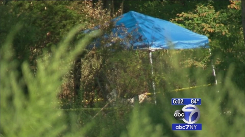 Pilot killed when small plane crashes shortly after take off