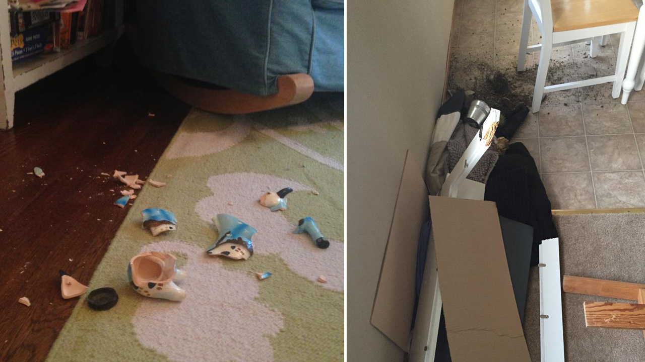 (Left) Broken ceramic goat from Greece via Maddie Malan/Twitter and (right) broken shelf via Brittany O'Brien/Twitter