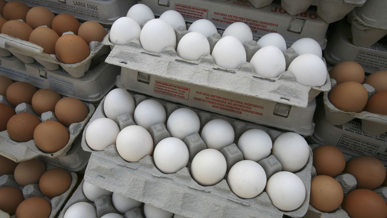 Farm fresh eggs are displayed at the Union Square green market on Wednesday, May 14, 2008 in New York. (AP Photo/Mark Lennihan)