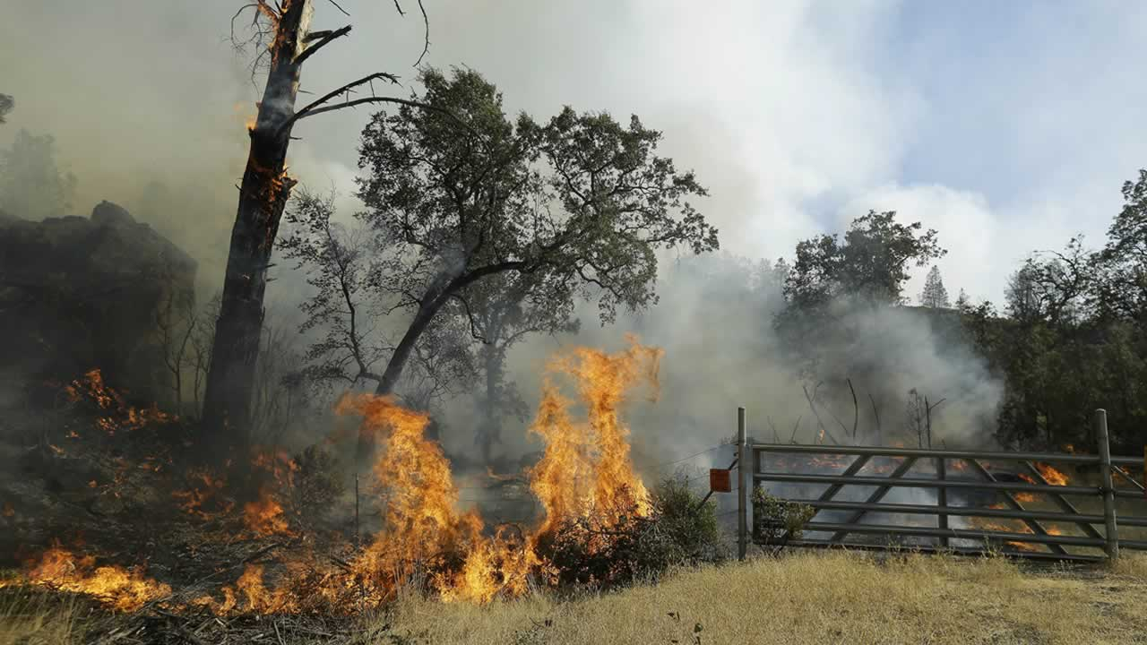 Fire from the Jerusalem fire burns near Napa County, Calif., Wednesday, Aug. 12, 2015.