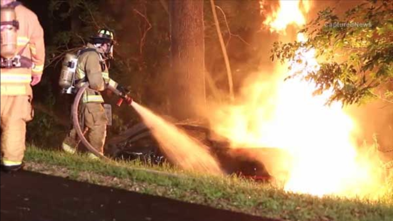 Three people were killed overnight after a car slammed into a tree and caught fire in far north suburban Ingleside.