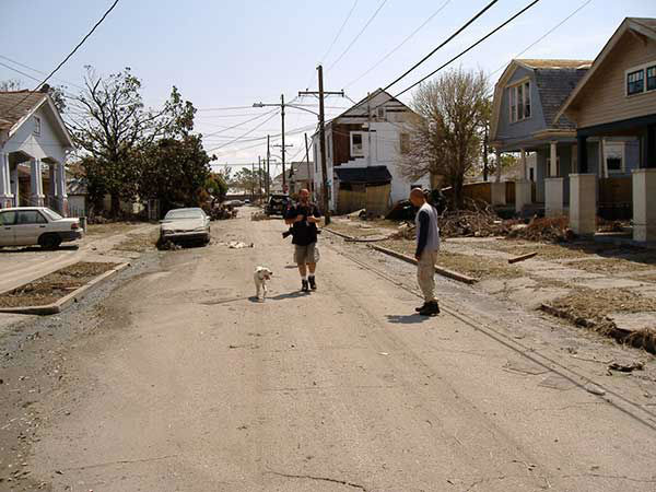 """<div class=""""meta image-caption""""><div class=""""origin-logo origin-image none""""><span>none</span></div><span class=""""caption-text"""">In the empty St. Bernard Parish, abandoned pets seek out help from reporters.  Animal control officers were also going through the neighborhood, rescuing animals. (WPVI Photo)</span></div>"""