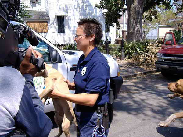 """<div class=""""meta image-caption""""><div class=""""origin-logo origin-image none""""><span>none</span></div><span class=""""caption-text"""">Animal Control officers go door to door, looking for the dogs and cats left behind by fleeing residents. (WPVI Photo)</span></div>"""