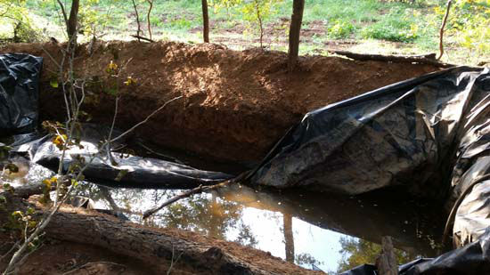 """<div class=""""meta image-caption""""><div class=""""origin-logo origin-image none""""><span>none</span></div><span class=""""caption-text"""">A tent, food, clothing, water reservoir, electric lines and water lines were located and destroyed at the pot-growing site (KTRK Photo/ Austin County Sheriff's Office)</span></div>"""