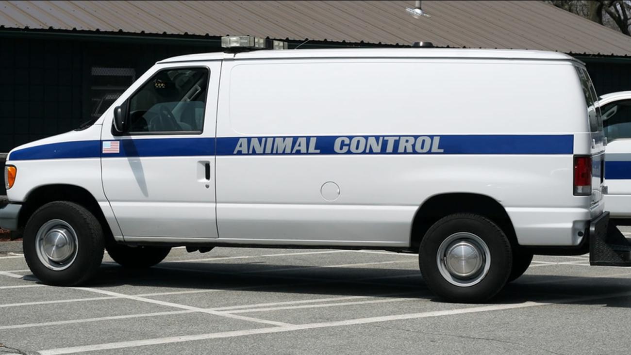 Animal control van