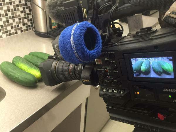"""<div class=""""meta image-caption""""><div class=""""origin-logo origin-image none""""><span>none</span></div><span class=""""caption-text"""">Our cameras shot cucumbers for a story (KTRK Photo)</span></div>"""
