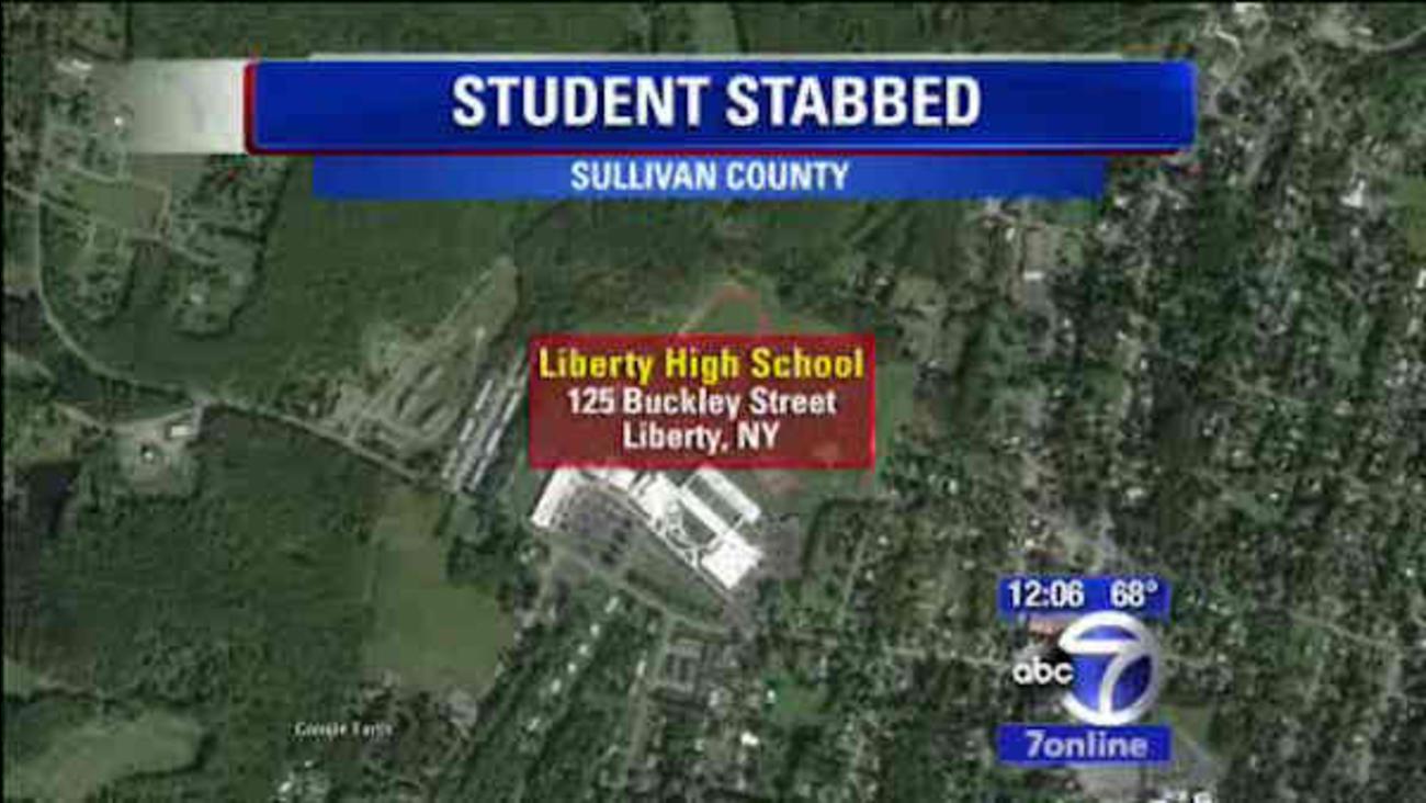 sullivan county school stabbing