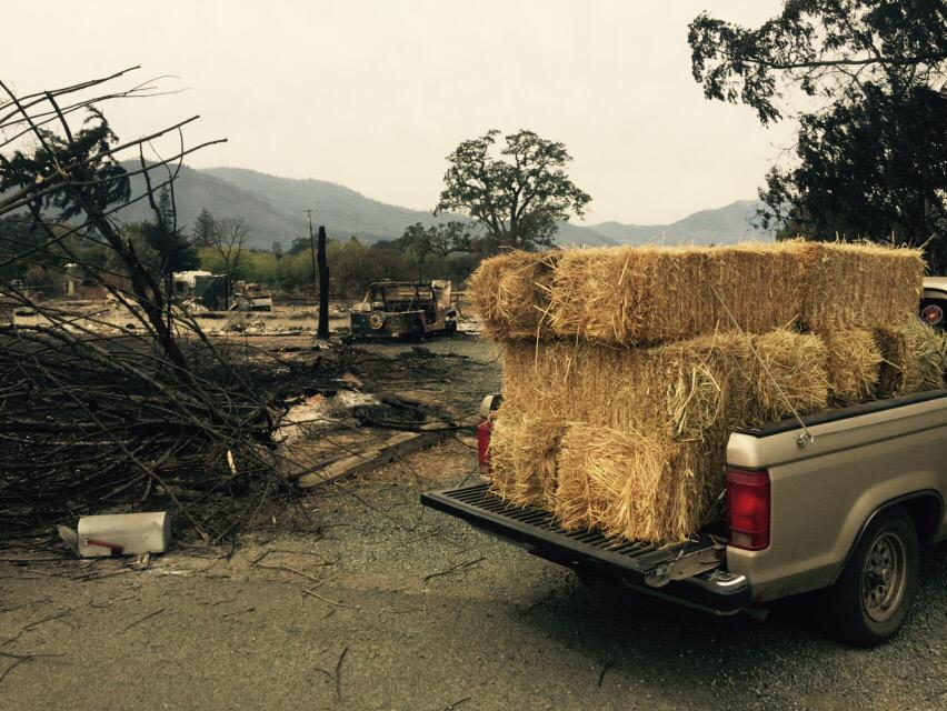 "<div class=""meta image-caption""><div class=""origin-logo origin-image none""><span>none</span></div><span class=""caption-text"">Bales of hay are brought in for horses on Tuesday, September 15, 2015 in Middletown, Calif. after the Valley Fire caused the evacuation of their owners. (KGO-TV)</span></div>"