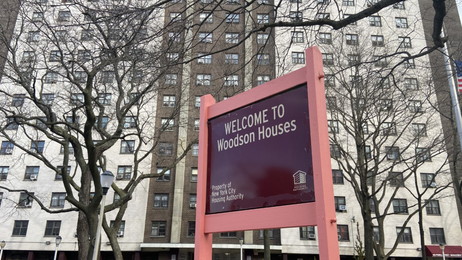 Alleged serial killer charged in 3 murders at NYCHA senior complex in Brooklyn